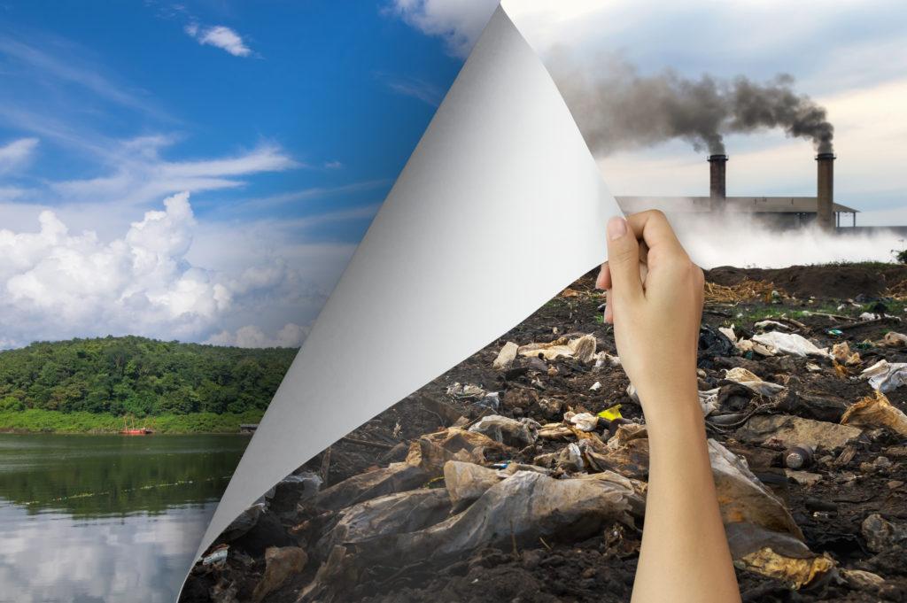 Progetto Amonn Eco sostenibilità